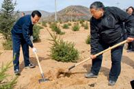 呼群:把防沙治沙作为生态建设的重中之重