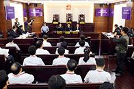 """""""上海法院的工作走在了全国前列!"""""""