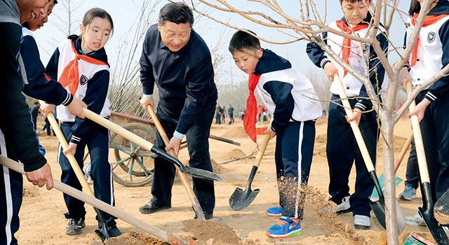 习近平:全民义务植树的一个重要意义,就是让大家都树立生态文明的意识