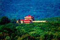 佛陀圣诞落地美国 弘扬中华文化 健康禅修盛行佛国 使命与时俱进