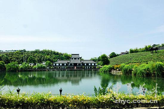 【4】白塔村云星生态园中的金丝楠木博物馆