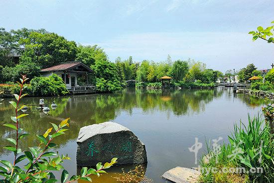 【8】白塔村养心湖休闲度假好去处